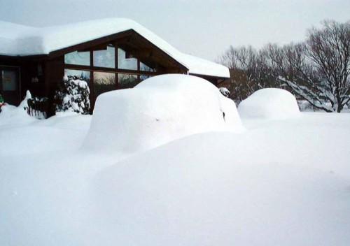 Neve e freddo in Italia: arriverà per davvero? Importanti conferme