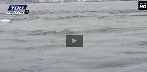 Gas vulcanici davanti al porto di Napoli? Il video