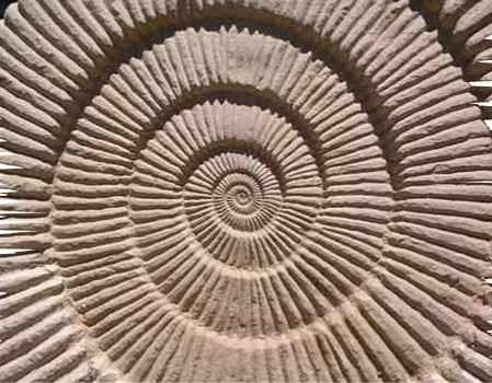 La Terra, uno scrigno di antichi tesori