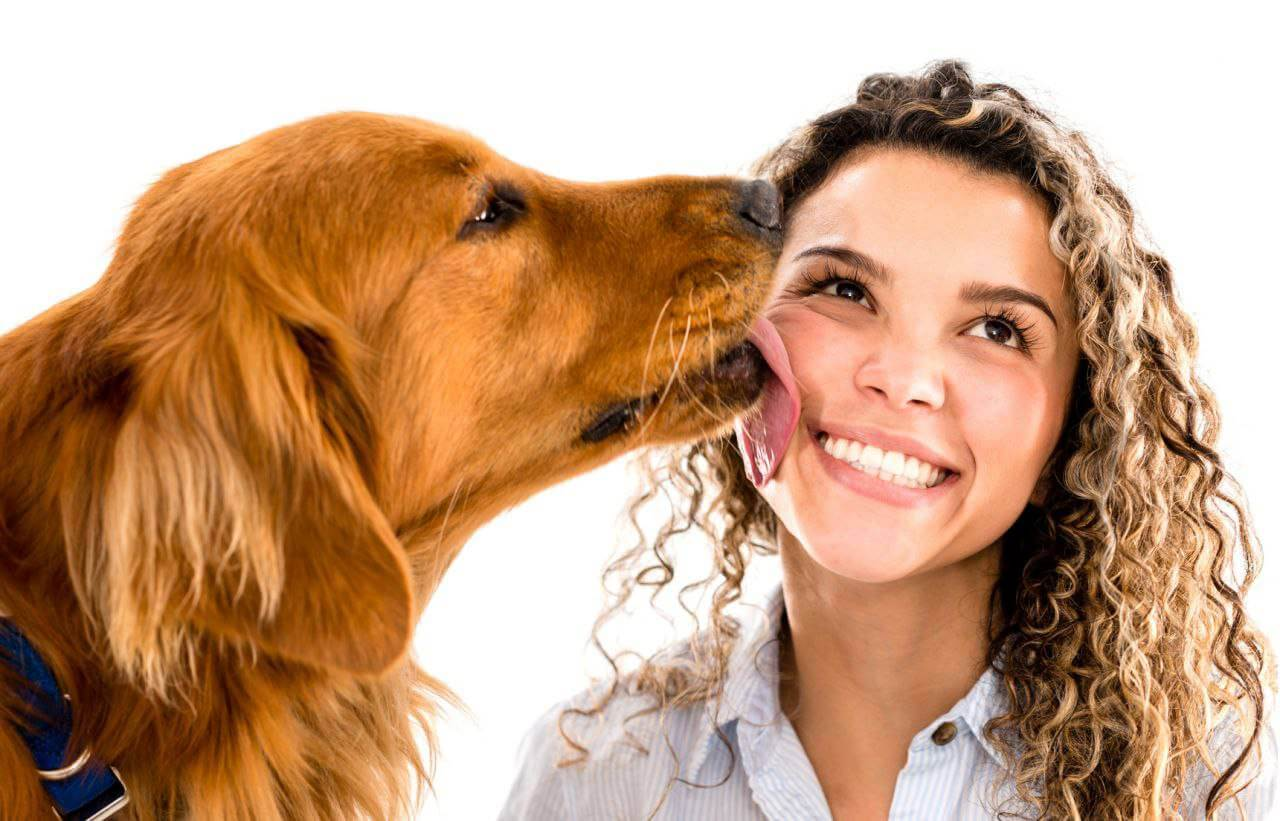 Il cane quando lecca il padrone trasferisce dei batteri benefici
