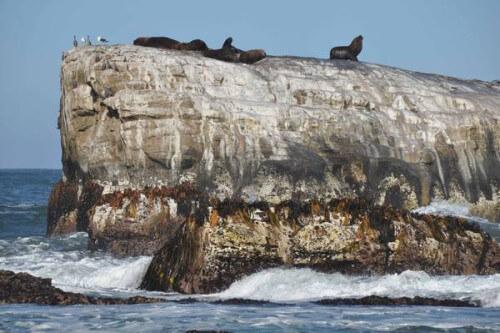 Santa Maria in Cile, l'isola che compare e scompare