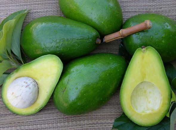 L'avocado, buon sapore e tante virtù benefiche