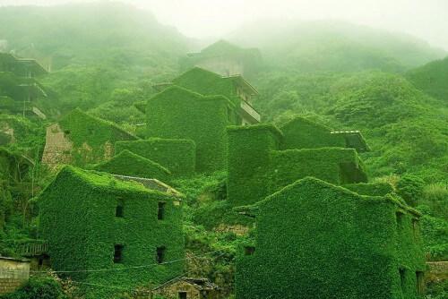 """Cina, la vegetazione si """"appropria"""" di un villaggio abbandonato"""