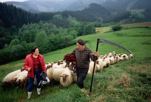 Scoperte le origini del popolo dei Baschi