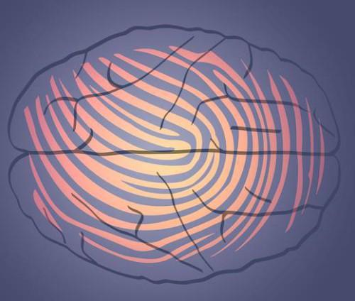 L'impronta digitale che caratterizza ogni cervello