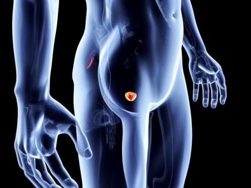 Tumore alla prostata, arriva il nuovo test per la diagnosi precoce