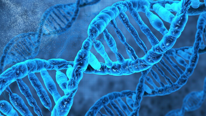 Uno studio scientifico potrebbe far ancora più luce sul microchimerismo