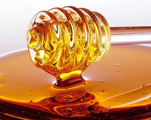 Api e miele venivano usati già 9.000 anni fa