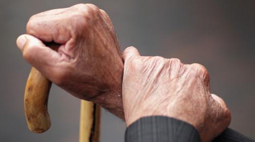 Parkinson: danni riparati nelle scimmie usando le staminali