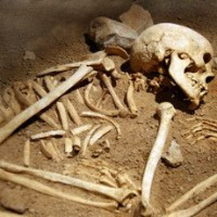 Storia dell'uomo, scoperto il quarto antenato Europeo