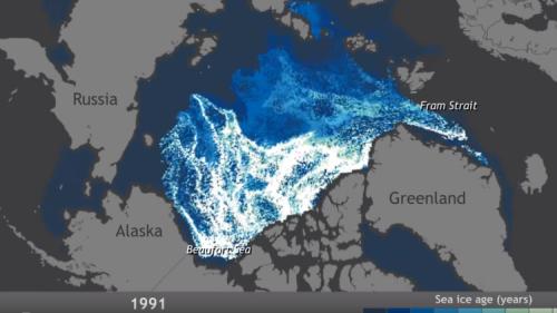 Artico, in un video lo scioglimento dei ghiacci negli ultimi 25 anni