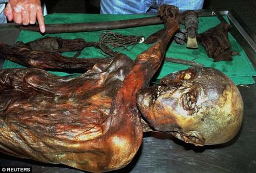 Scienza: trovati batteri in un corpo mummificato