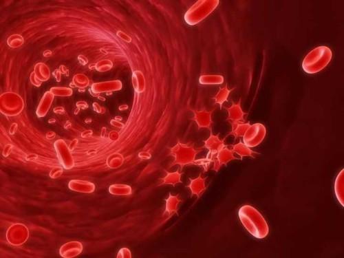 Firma genetica, un test del sangue per scoprire la causa dell'infezione