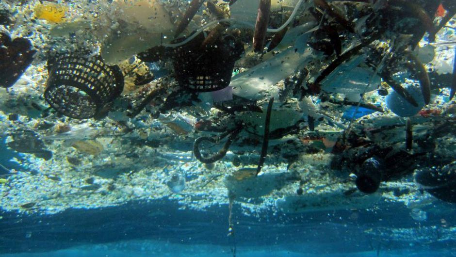 Plastica più abbondante dei pesci nel 2050: l'allarme degli scienziati