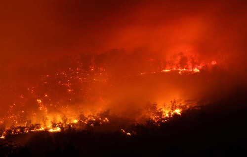 Tasmania: incendi devastano migliaia di ettari di antichissime foreste