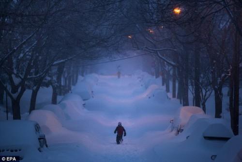 Tempeste di neve negli USA, sono raddoppiate negli ultimi 20 anni