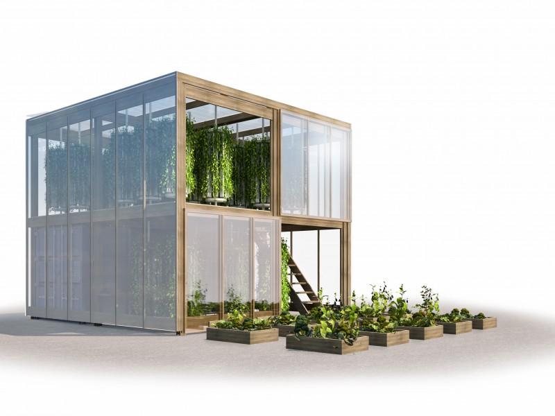 Coltivare la verdura in città, ora si può grazie alla Impact Farm