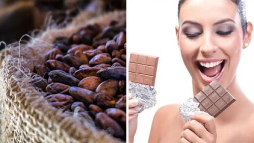 Cioccolato, a rischio la colvitazione del cacao a causa del clima