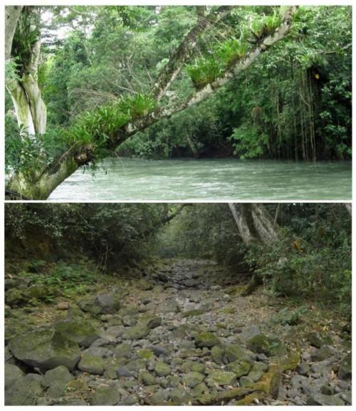 Messico, il mistero del fiume che viene inghiottito dalla terra