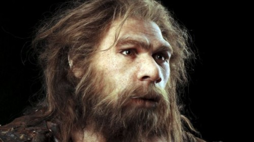 Estinzione Neanderthal: ulcera, tubercolosi ed herpes tra le cause