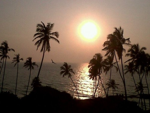 Caldo record in India, raggiunti i 51 gradi