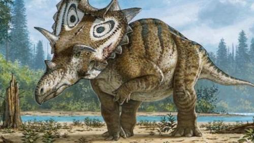 Paleontologia, scoperta nuova specie di dinosauro