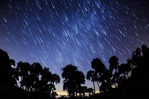 Stelle cadenti: lo spettacolo delle Eta Aquaridi nei cieli di maggio