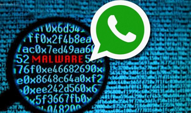 Truffa WhatsApp: in un messaggio il link che brucia la scheda madre