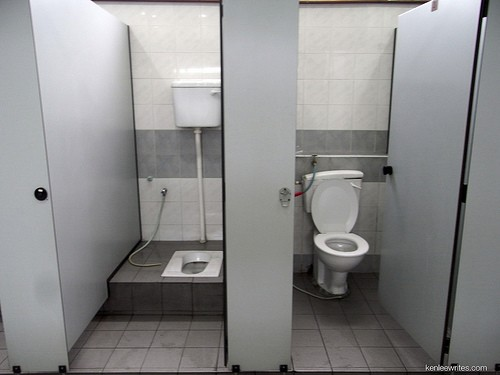 Salute: applicare la carta igienica sul water dei wc pubblici è dannoso
