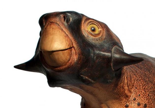 Psittacosaurus: ricostruito il dinosauro più 'buffo' della Preistoria