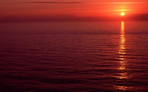 Proxima B, il pianeta abitabile potrebbe essere avvolto da un oceano