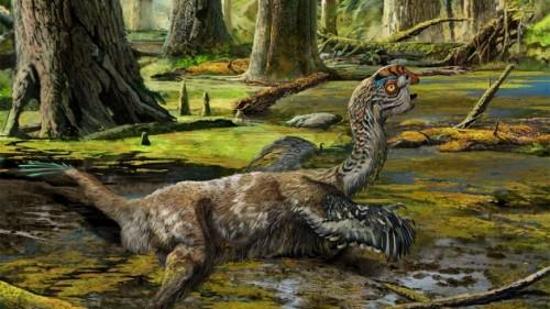 Cina: scoperto dinosauro piumato morto nelle sabbie mobili
