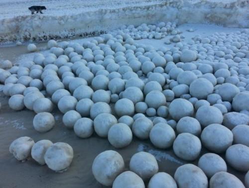 Palle di neve sulla costa: l'incredibile fenomeno in Russia