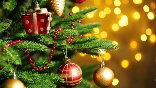 Albero di Natale: ecco come è nato secoli fa