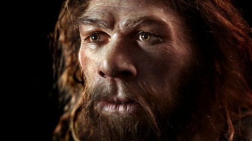 Preistoria: ecco come l'uomo di Neanderthal decorava le grotte