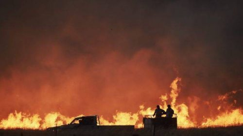Clima: gli incredibili effetti del caldo record in Australia