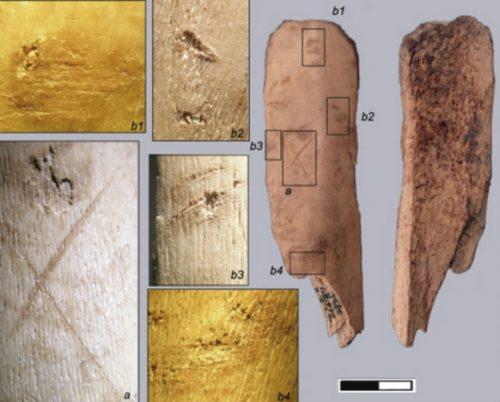 Spagna: scoperte tracce di cannibalismo in una grotta preistorica