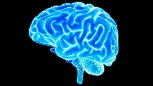 Canada: uomo muore, ma il cervello rimane attivo per 10 minuti