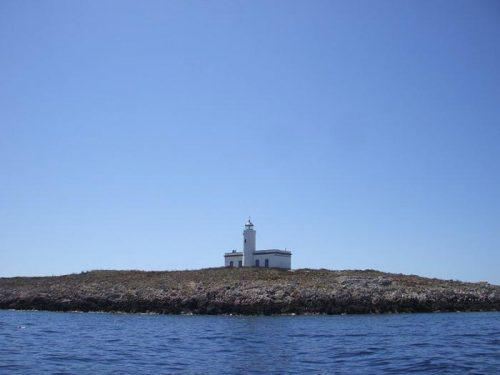 Isole Formiche: scoperta la natura del fenomeno
