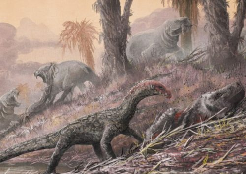Paleontologia: scoperto rettile antenato dei dinosauri