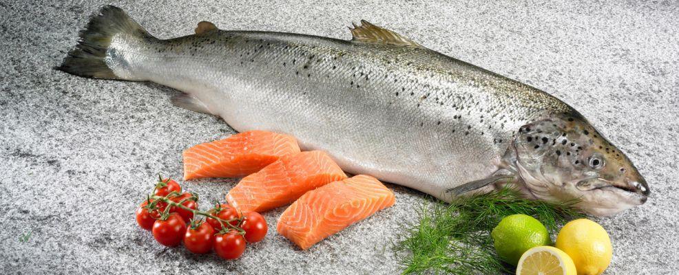 Fresco salmone Norvegese, ideale per tutta la famiglia: gradito da grandi e piccini