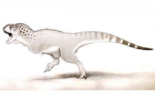 Paleontologia: scoperto l'ultimo dinosauro vissuto prima delll'estinzione
