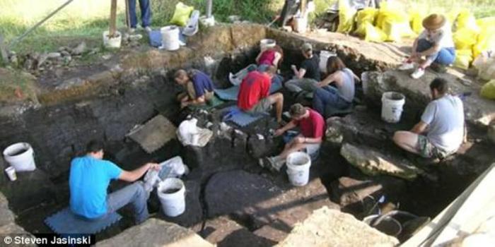 Scoperto il fossile di un serpente 'alato' di cinque milioni di anni fa