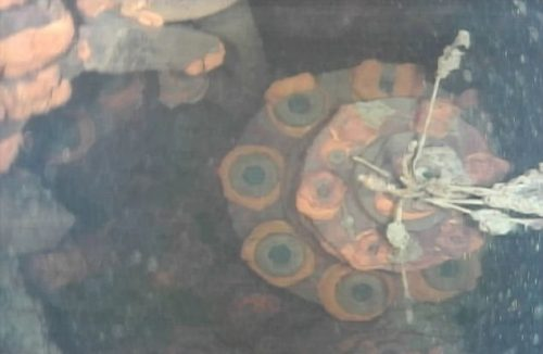 Fukushima: le prime immagini del reattore