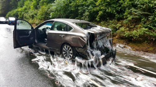 Oregon: furgone perde 'missine', ondata di muco sulla strada