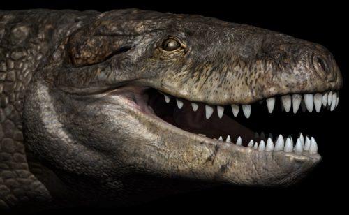 Razana, lo spaventoso coccodrillo del Giurassico con denti da T.Rex