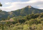 Vino di seimila anni fa scoperto ad Agrigento