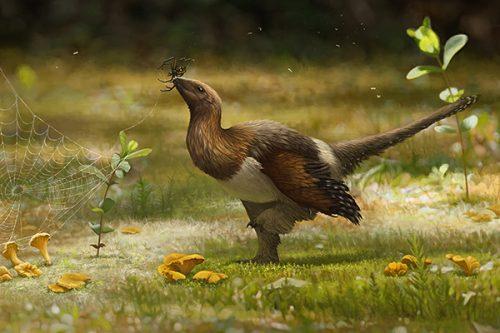 Serikornis sungei, il piccolo dinosauro con quattro ali vissuto 160 milioni di anni fa