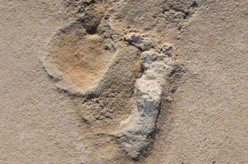 Creta: scoperte impronte umane che potrebbero rivoluzionare la storia dell'evoluzione