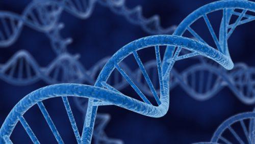 I traumi sono 'ereditari' fino alla terza generazione, la clamorosa scoperta